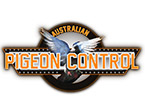 Australian-Pigeon-Control-lg